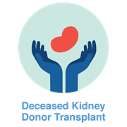 deceased kidney donor icon