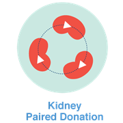 paired kidney donation icon